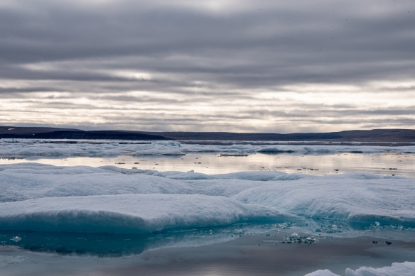 Pack ice #3 in Peel Sound, Northwest Passage, Nunavut, Canada
