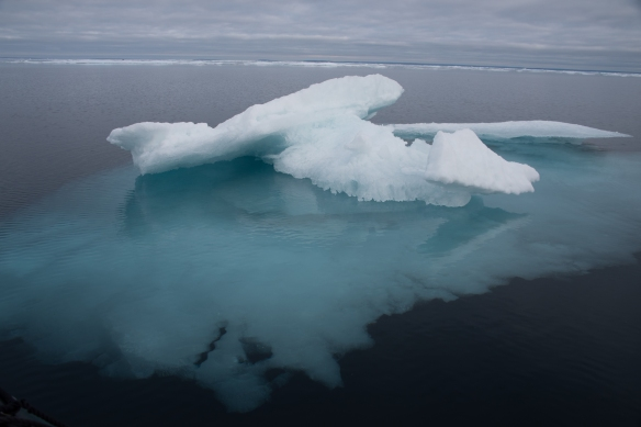 Pack ice #5 in Peel Sound, Northwest Passage, Nunavut, Canada