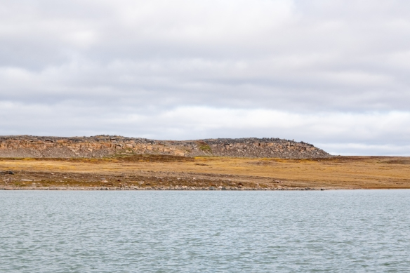 The terrain around the Nakyoktok River is all flat tundra except for the low rise rock piles pictured here, Victoria Island, Nunavut, Canada