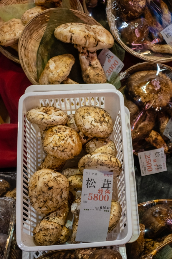 We ended up paying about US7.50 for one of these special local mushrooms to accompany our lightly pan seared (in lard in a cast iron skillet) wagyu-like beef