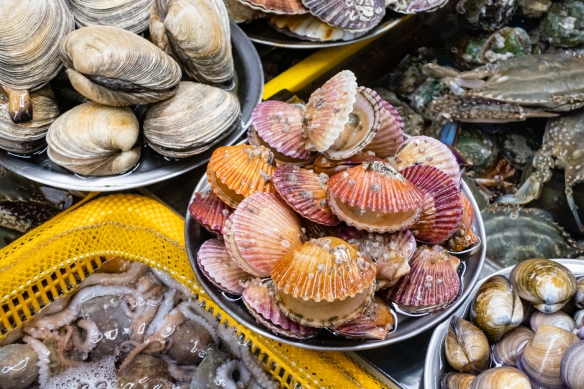 Beautifully colorful scallops front and center amid an array of octopus, clams and crab in a stall at Jagalchi Seafood Market, Busan, South Korea