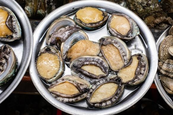 Fresh Asian abalone (very expensive!), Jagalchi Seafood Market, Busan, South Korea