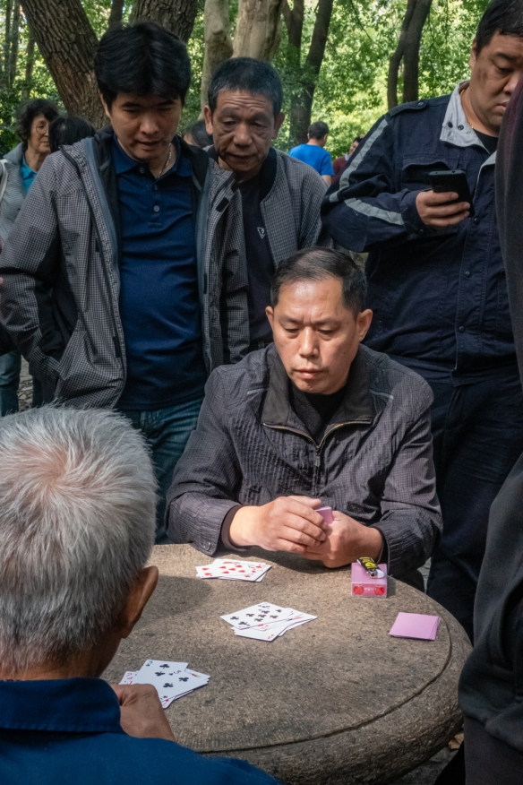 People watching in People's Park, Shanghai, China; here, a pickup card game with locals watching the game – one of many tables in the eastern side of the park with games underway and discussion groups nearby, too