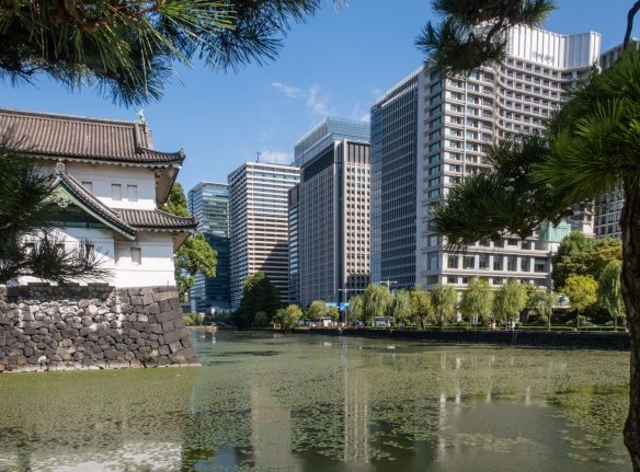 The Gardens of the Imperial Palace, Tokyo, Honshu Island, Japan #3 – looking downtown from Wadakura Fountain Park in the Gardens at some of the nearby high rise office buildings downtown in the Marunouchi district