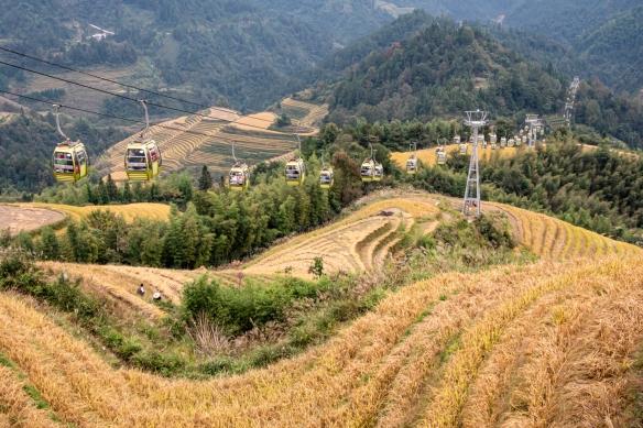 Jinkeng Red Yao Terraced Fields, Dazhai Village in the Longji Rice Terraces region, near Guilin, Guangxi, China #3