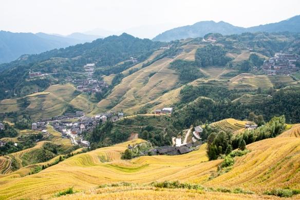 Jinkeng Red Yao Terraced Fields, Dazhai Village in the Longji Rice Terraces region, near Guilin, Guangxi, China #6