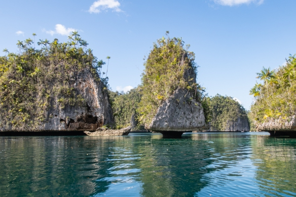 Zodiac cruise through the limestone (karst) sculptures of Triton Bay, New Guinea, Indonesia #6