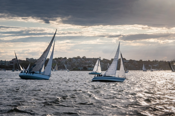 Evening sailing in Snails Bay in the center of the greater Sydney metropolitan area; New South Wales, Australia