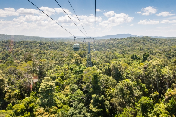 Instead of going down the mountain on the Kuranda Scenic Railway, we rode down in the relatively new Skyrail Rainforest Cableway in gondolas that seated up to 6 people; the ride traverses a winding, 4.5 mile - 7.2 km route; Cairns, AU