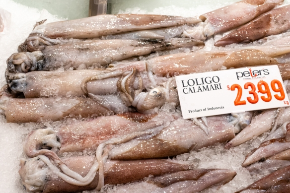 Calamari, Sydney Fish Market, Sydney, New South Wales, Australia