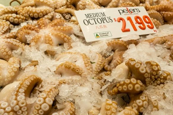 Octopus, Sydney Fish Market, Sydney, New South Wales, Australia