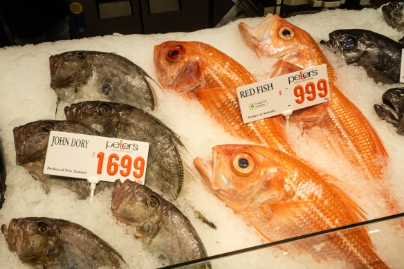 Peter's Sydney Fish Market sells a wide variety of fresh fish, mostly from local waters but extending around the coast of Australia and Tasmania; Sydney Fish Market, Sydney, New South Wales, Australia