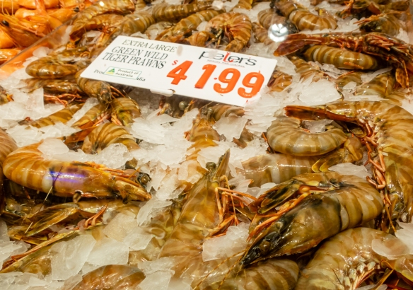 "We bought some of the extra-large green wild tiger prawns to boil and then eat for lunch as a ""shrimp-a-peel"" back on the ship; Sydney Fish Market, Sydney, New South Wales, Australia"